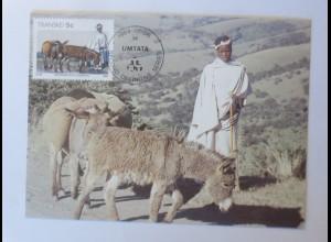 Maximumkarten Transkei Traditionelle Sitte 1984 ♥ (20875)
