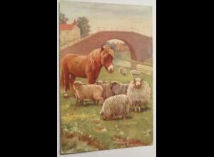 """Schaff, Pony, Landschaft"" 1908, Oilette, sig. Syney Hayes ♥"