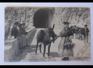 Esel, Frauen, Route von Nizza nach Menton, 1905 ♥ (74602)
