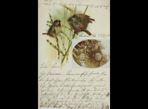"""""""Vogel, Frauenfoto"""" 1901 ♥"""