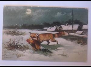 Tiere, Fuchs, Hahn, Jagd, Mond, 1906 ♥