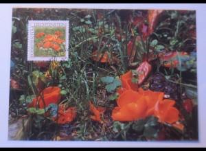 Maximumkarten Pilze Gemeiner Orangenbecherling 1997 ♥ (4340)