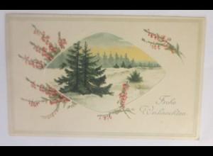 Weihnachten, Winterlandschaft, Tannenbaum, Blumen, 1912 ♥ (70714)