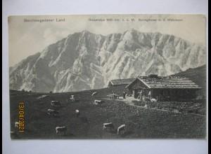 Bayern Berchtesgadener Land, Gotzenalpe Gotzenalm Watzmann 1908 (45772)