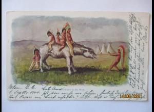 Indianer Cupid in the West, Prägekarte, Canada ca. 1900 (4674)