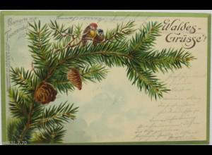 """""""Postkarte mit Tannenduft, Vogel"""" 1901 ♥"""