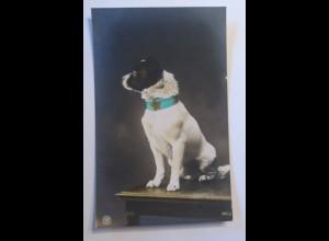 """""""Hund"""" 1910 ♥ (6619)"""