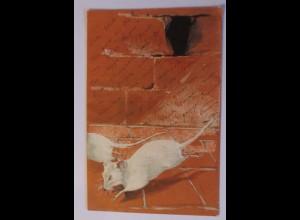 """""""Ratten, Keller, Rattenloch""""1903, Prägekarte ♥"""