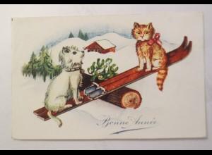 """""""Katzen, Hund, Wippe, Misteln"""" 1910 ♥"""