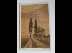 Deutscher Schulverein, Nr. 1021, Abendfriede, Anton Amon ♥ (11043)