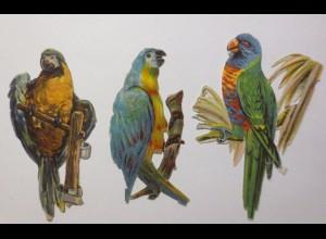 3 Oblaten, Papagei, 1900, 9 cm x 4 cm ♥ (46009)