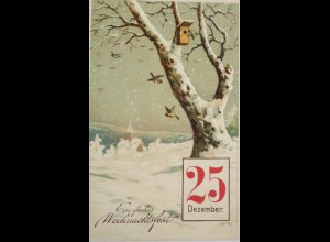 """""""Neujahr, Vogel, Winterlandschaft, Kalender"""" 1912, Prägekarte ♥ (18244)"""
