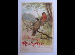 Pfingsten, Vogel, 1904, Prägekarte ♥ (41869)