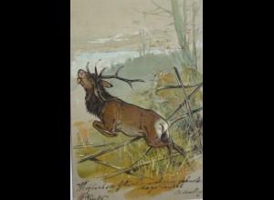 """Hirsch, Zaun, Landschaft"" 1905, Prägekarte ♥"