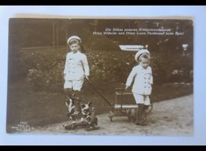 Prinz Wilhelm und Prinz Louis Ferdinand beim Spielen 1913 ♥ (34758)