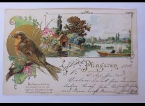 Pfingsten, Vogel, Landschaft, Blumen, 1903, Prägekarte ♥ (41881)