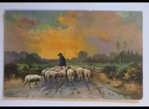 Berufe, Hirte, Schäfer, Schafe, Schaf, 1906, Theo Stroefer ♥