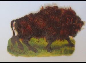 Oblaten, Büffel, 1900, 6 cm x 4 cm ♥ (38287)