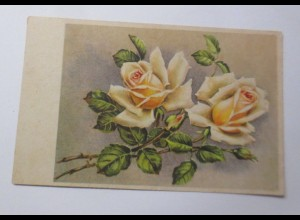 Blumen, Rosen, 1948 ♥ (44091)