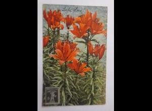 Blumen, Lilien, 1913 ♥