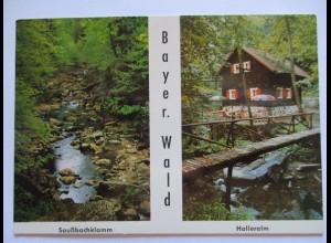 Bayern, Halleralm und Saußbachklamm, Fotokarte 1969 (11625)