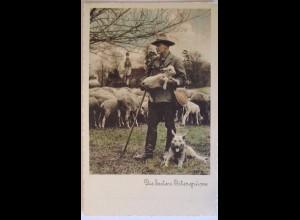 Schäfer, Schafhirte, Schäferhund und Schafe, Ostergrüße ca. 1930 (12234)