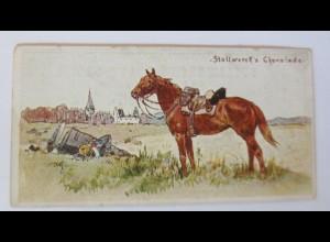 Stollwerck, Gruppe 48, Nr. 3, Album Nr. 2, Pferde, 1910 ♥ (61799)