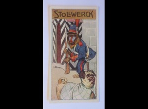 Stollwerck, Gruppe 455, Nr.5, Album Nr. 2, Mandrill im Affentheater ♥