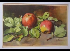Apfel, 1920, S. Bonelli ♥ (69668)