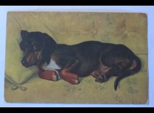 """""""Dackel, Hund, Sofa"""" 1910, sig. J.von Holst ♥ (30677)"""