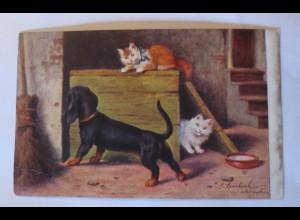 """""""Dackel, Katzen, Scheune"""" 1910 ♥ (30665)"""