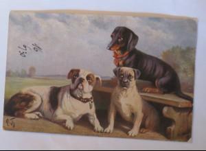 """Dackel,Hund, Bank, Rivalen"" 1910, Primuskarte ♥ (30687)"