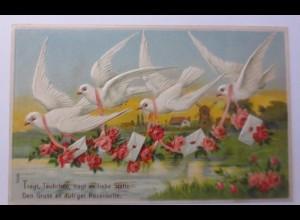 """""""Tauben, Briefe, Rosen, See"""" 1909, Prägekarte ♥ (60702)"""