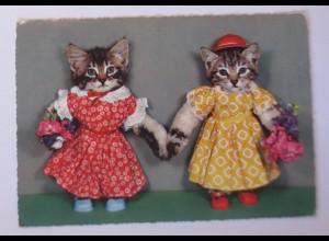 Personifiziert, Katzen, Mode, Blumen, 1970 ♥