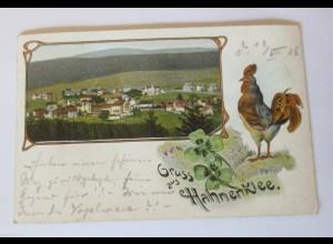 """""""Gruß aus Hahnenklee-Bockswiese, Goslar"""" 1909, Prägedruck ♥"""