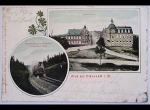 Schöneck Voigtland, Bahnhofstrasse Eisenbahn 1903