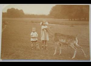 Photographie, Kinder mit Rehe, Fotokarte 1925