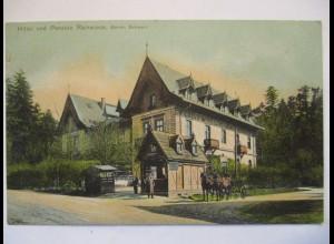 Tschechien, Rainwiese, Mezní Louka, Hotel und Pension, ca. 1910