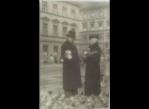 Vögel, Tauben, Fotokarte 1934 aus Bonn (35655)