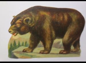 Oblaten, Bär, 1900, 16 cm x 11 cm ♥ (45981)