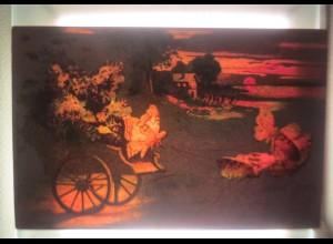Halt gegen das Licht, Schmetterlinge, Wagen, Blumen, 1899, Meteor ♥ (50269)