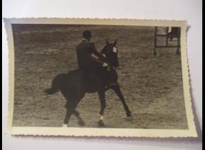 Reiten, Sport, Pferde, Reiter, Fotokarte