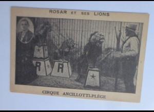 Zirkus, Löwen, Rosar et ses Lions, Ancillotti-Plege, Artisten, 1910 ♥