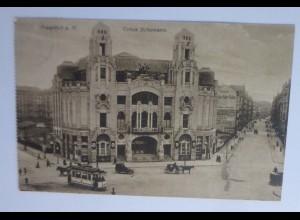 Frankfurt a.M. Zirkus Schumann, 1908 ♥
