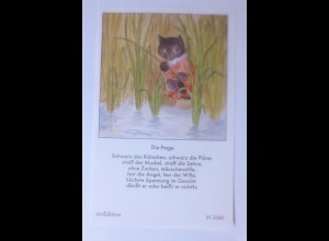 Sammelbild, Katzen, 10,5 cm x 6,5 cm 1950, Ida Bohatta Morpurgo ♥