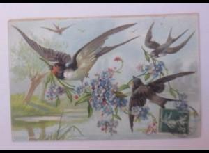 """""""Vogel, Schwalben, Vergissmeinnicht"""" 1910, Prägekarte♥"""
