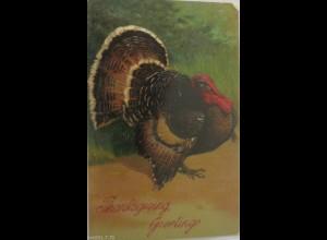 """""""Thanksgiving, Truhthahn"""" 1908, Prägekarte ♥"""
