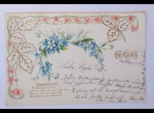 Jugendstil Tauben, Vergissmeinnicht, 1903, Prägekarte ♥