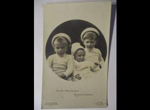 Die 3 Söhne des Kronprinzen, 1911 nach Oberkammlach (37110)