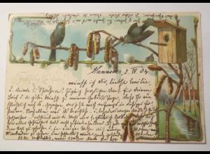 Ostern, Vogel, Vogelhaus, 1904 ♥ (29841)